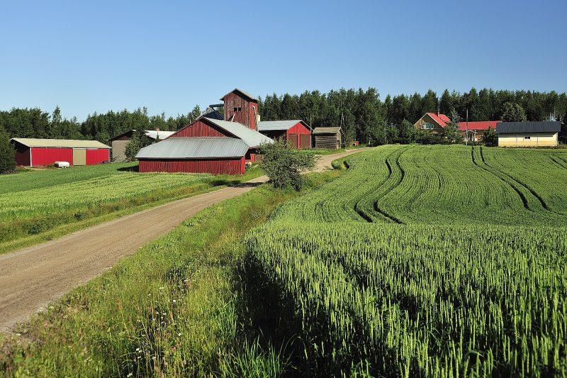 EU:n maaseuturahastosta varoja Keski-Suomen yrityksille ja yhteisöille