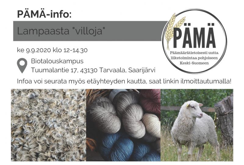 """PÄMÄ: Lampaasta """"villoja"""" -info ke 9.9. klo 12.00-14.30"""
