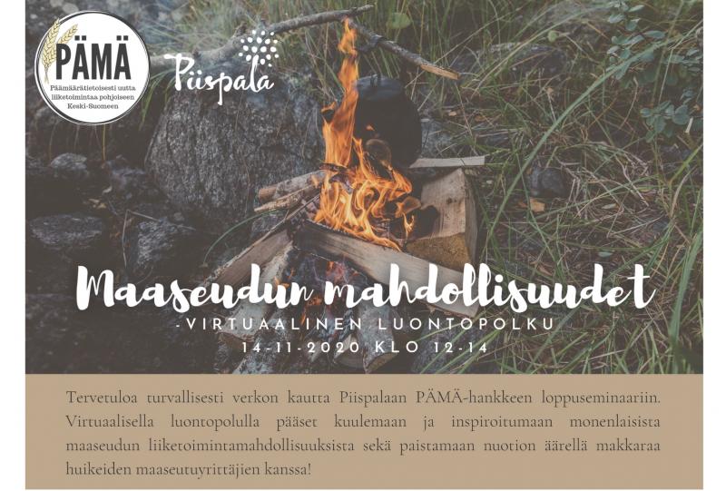 PÄMÄ-hankkeen virtuaalinen loppuseminaari 14.11. klo 12-14